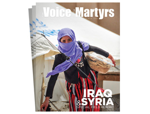 Iraq & Syria Special Field Report (Pack of 25)