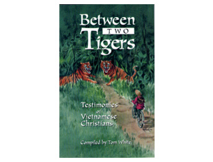 Between Two Tigers